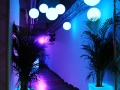 Location Boules lumineuses suspendues - Vases lumineux - Paris